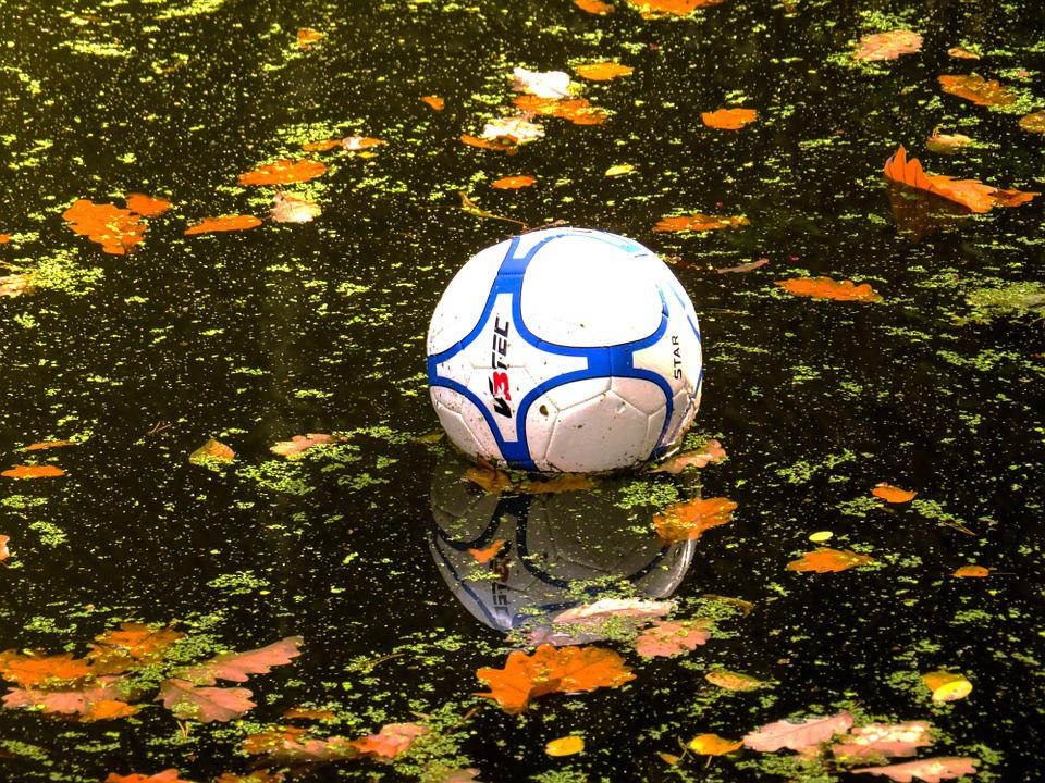 Water, Ball, Water Polo, In The Water, Football