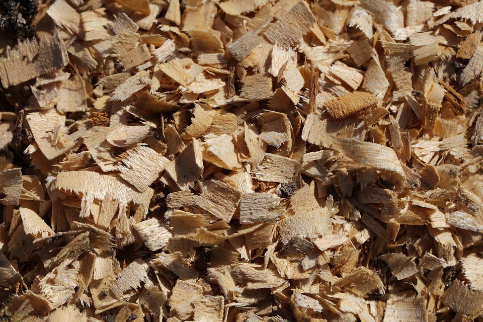 Chips, Wood, Incomplete, Brown