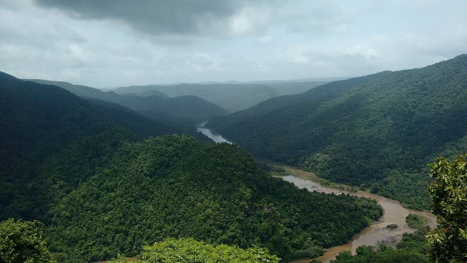 Dandeli, Kali, River, Karnataka, India, Greenery