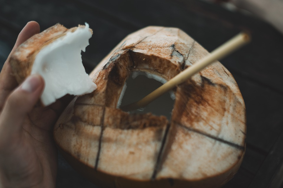 Coconut, Lombok, Indonesia, Landscape, Travel, Hiking