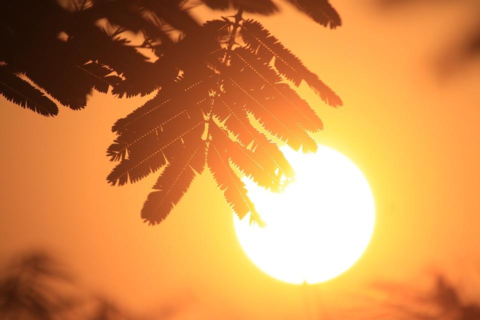 Sun, Sunrise, Ray, View, Indonesian, Exotic, Yellow