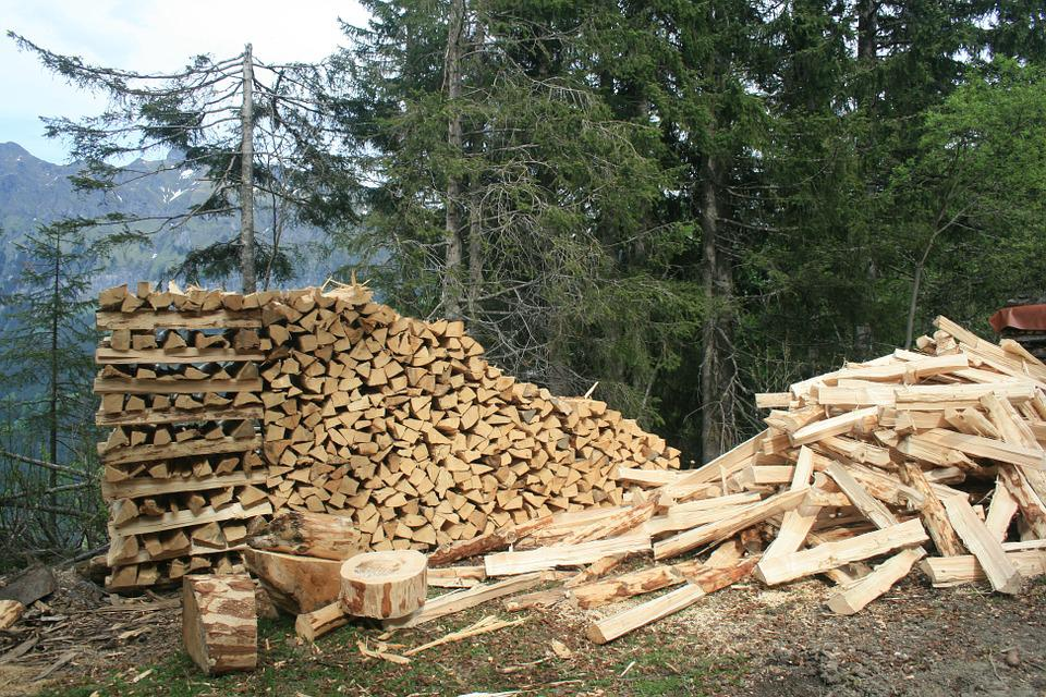 Wood, Pile, Forest, Timber, Industry, Environment