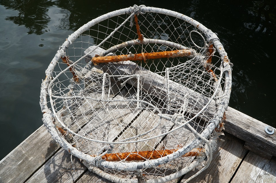 Crab, Pot, Fishing, Sea, Industry, Netting, Rope, Trap