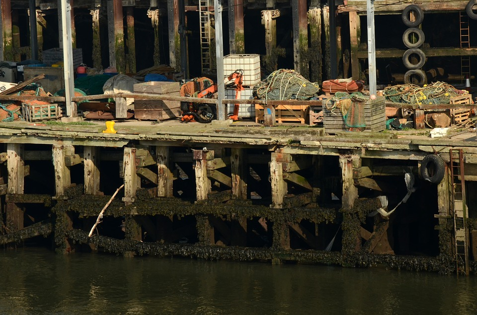 Port, Water, Sea, Industry, Fisheries, Just, Quay