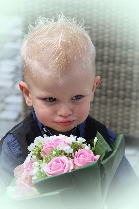 Child, Bouquet, Wedding, Son, Blond, Infant