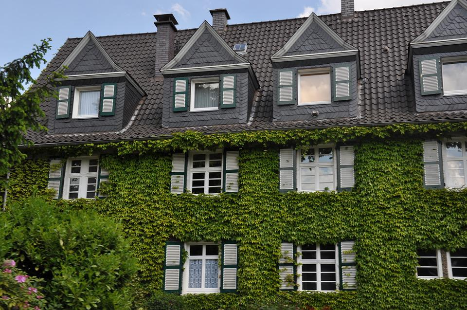 Home, Green, Building, Shutter, Romantic, Ingrowing
