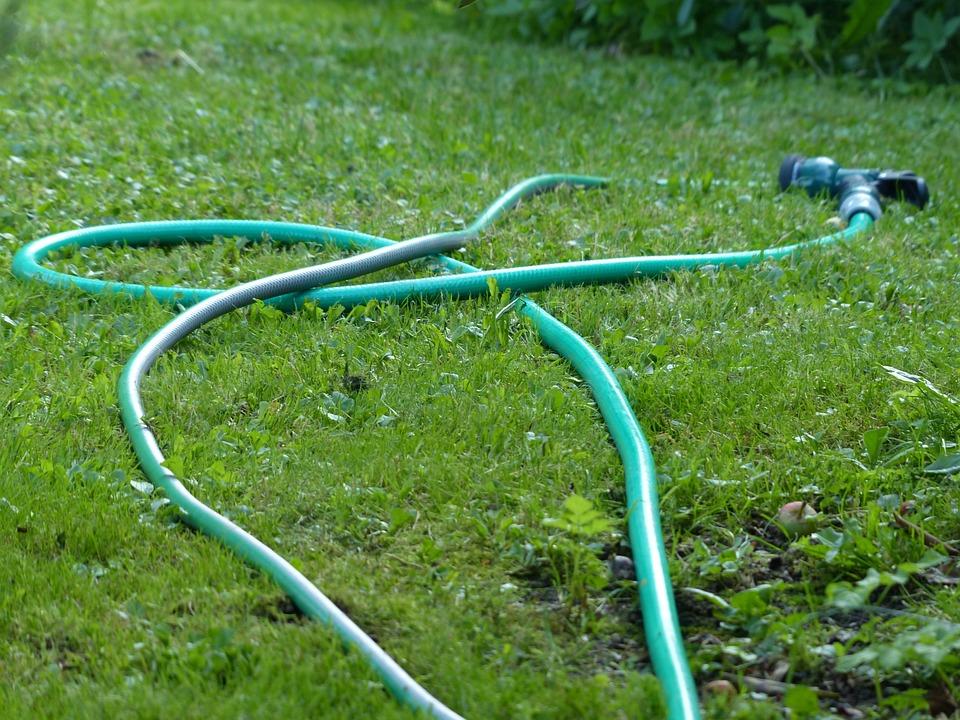 Garden, Meadow, Garden Hose, Water, Casting, Inject