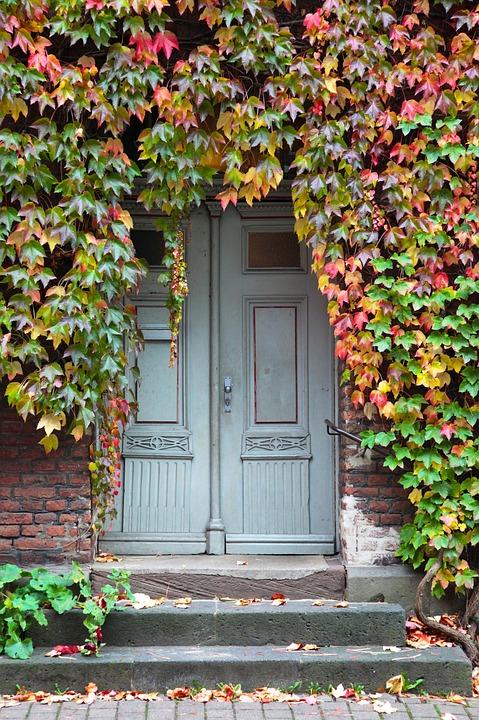 Input Door Oak Ivy Stone Stairway Doors & Free photo Input Stone Stairway Door Oak Ivy Doors - Max Pixel