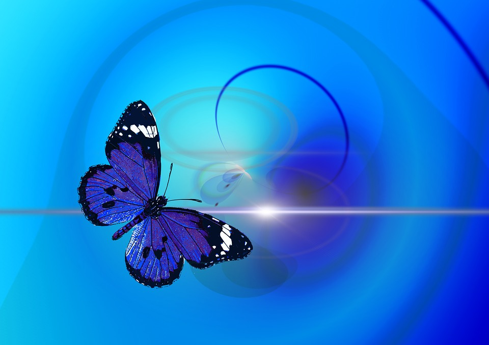 Butterfly, Animal, Insect, Abstract, Background, Modern