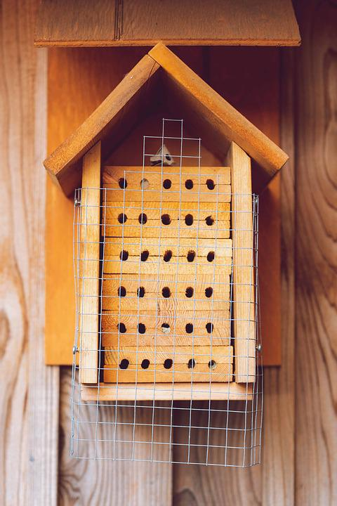 Insect House, Bee Hotel, Solitary Bees, Wild, Wood
