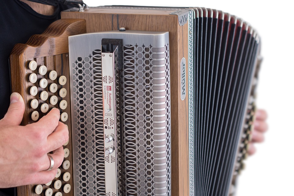 Accordion, Instrument, Musical Instrument, Folk Music