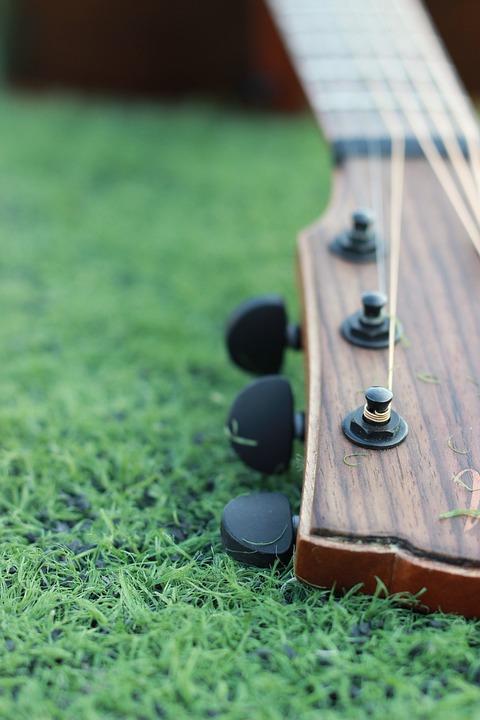 Guitar, Grassland, Green, Music, Instrument