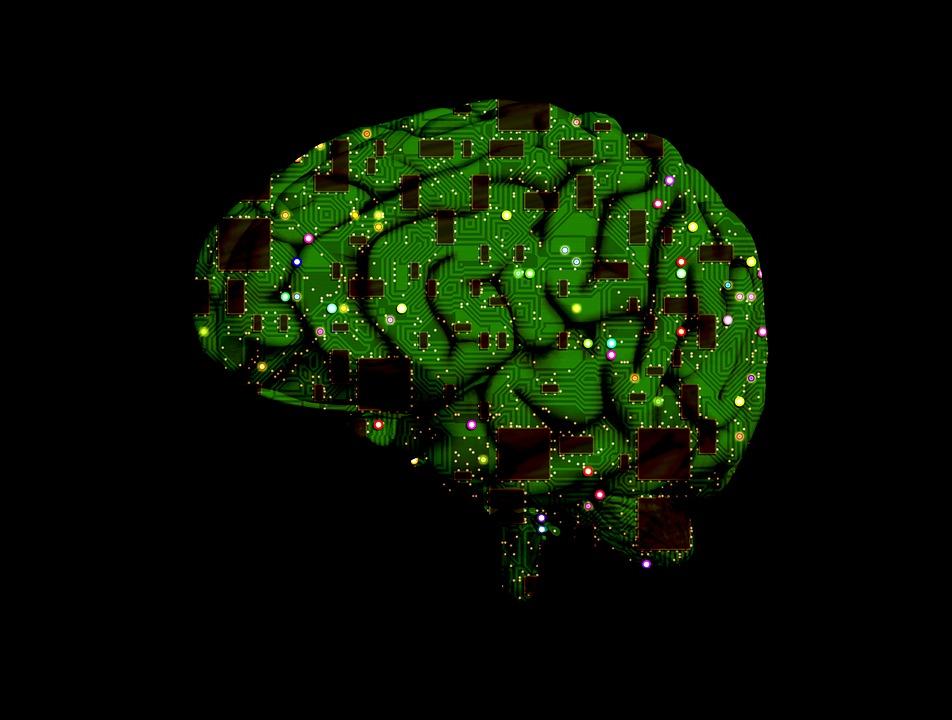 Brain, Circuit, Intelligence, Artificial, Processing