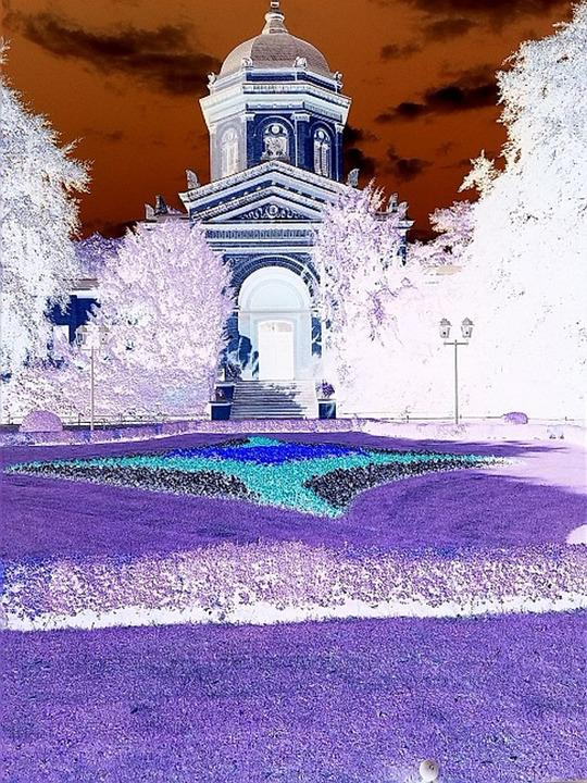False Color, Inverted, Infra Red, Magdeburg, Cemetery