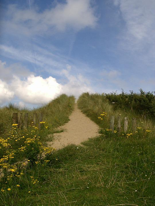 Ireland, Coast, Beach, Dune, Away, Path, Nature