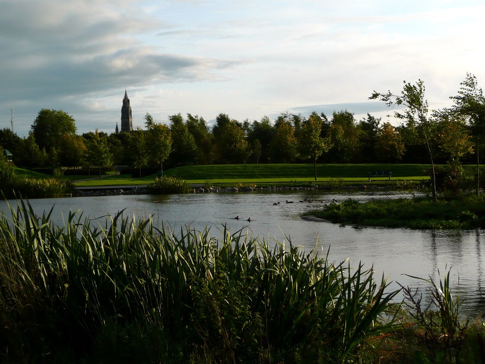Irish, Town, Ireland, Green, Pond, Grass, Nature