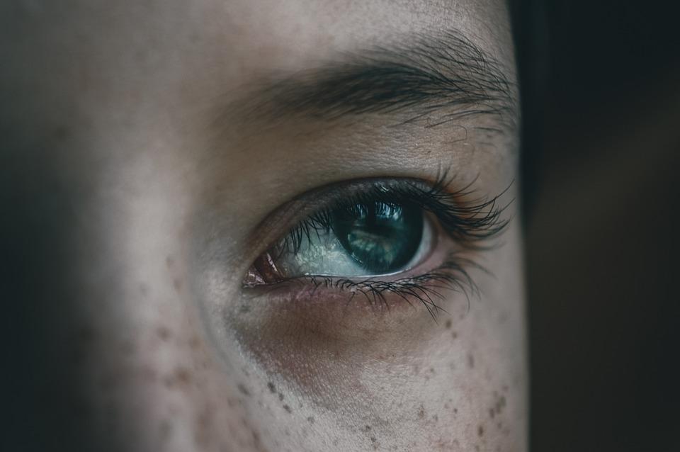 Eye, Eyelashes, Eyebrow, Close-up, Iris, Human Eye