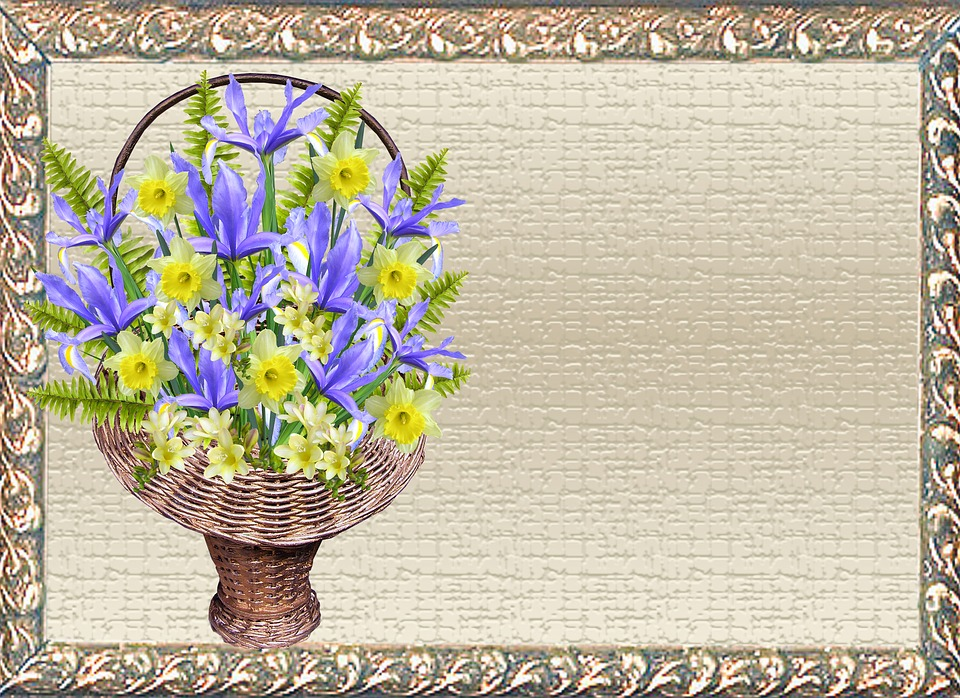 Greeting Card, Iris, Daffodil