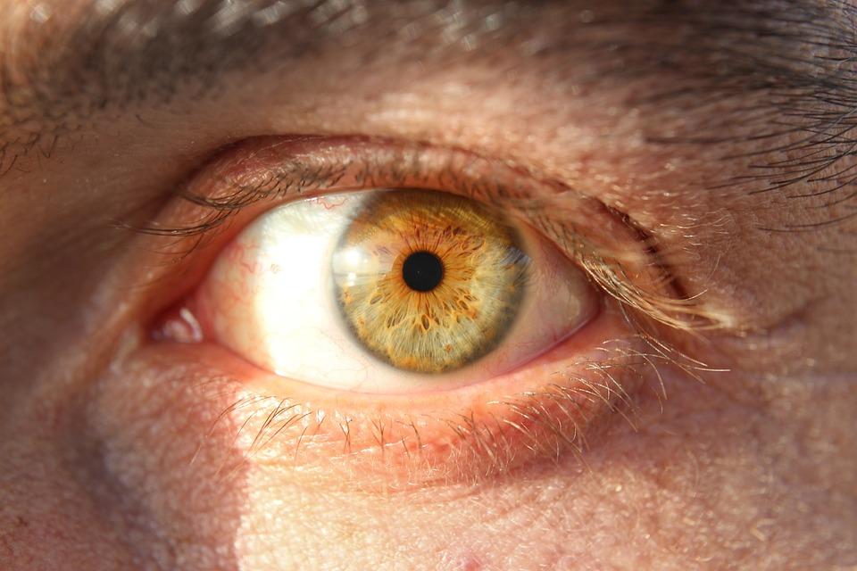 Eye, Look, Iris, To Watch, View, Eye Open