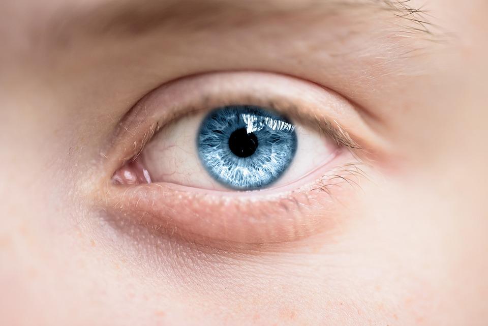 Eye, Blue, Iris, Pupil, Eyesight, Blue Eye, Vision