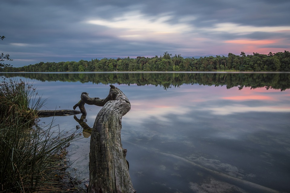 Vught, Iron Man, Water, Landscape, Nature, Netherlands