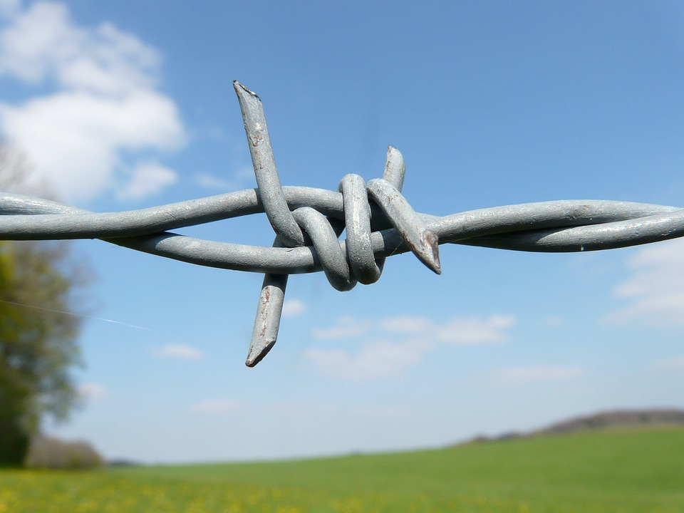 Barbed Wire, Fence, Barbed Wire Fence, Metal, Iron