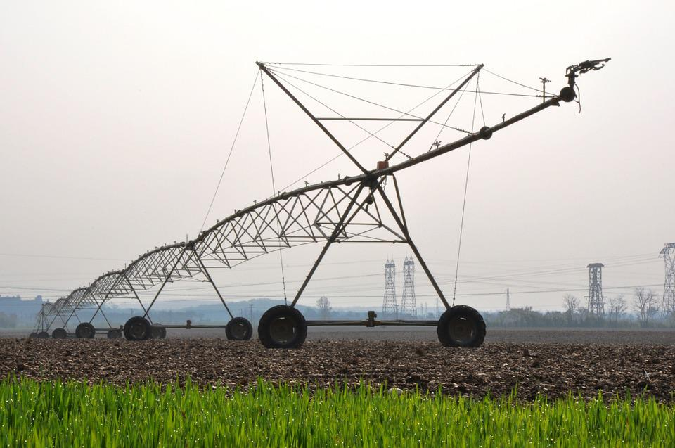 Agriculture, Watering, Water, Irrigation, Environment
