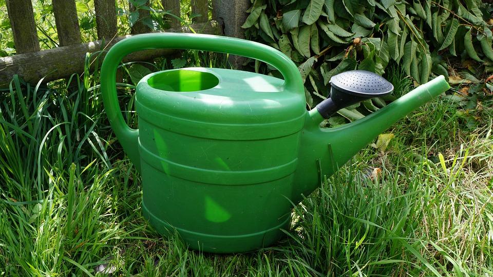 Watering Can, Water, Garden, Plastic, Irrigation