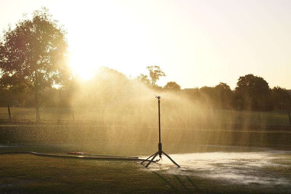 Sprinkler, Water, Watering, Irrigation, Pressure, Spray