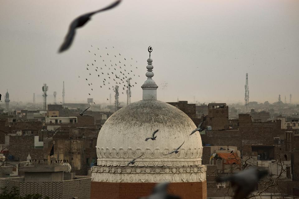 Birds, Pigeons, Religion, Mosque, Islam, Pakistan