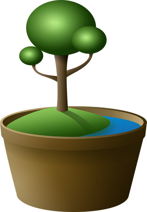 Tree, Bonsai, Vase, Island, Green, Lake, Cartoon