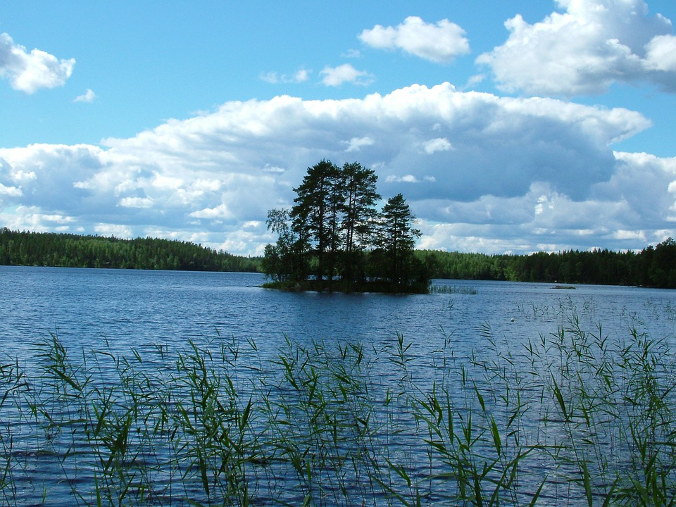 Lake, Island, Small, Trees, Finnish, Reeds, Sky, Clouds