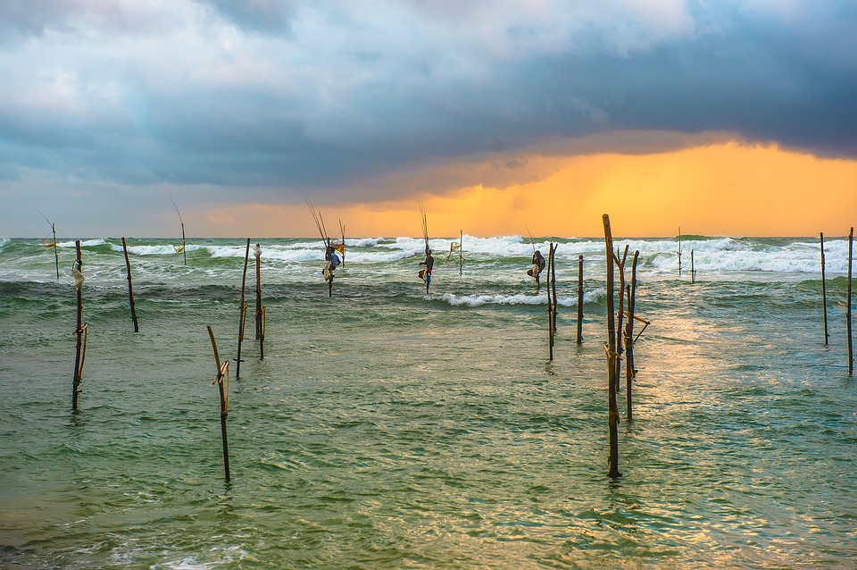 Sri Lanka, Travel, Country, Island, Nature, Landscape