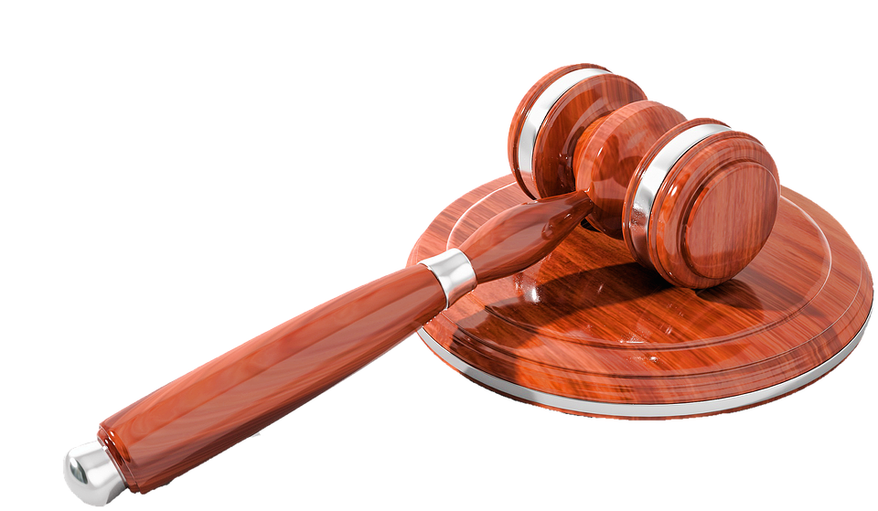 Isolated, Auction, Court, Paragraphs, Law, Case Law