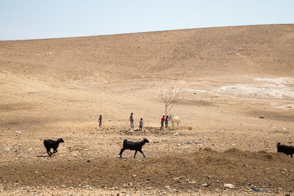 Nomads, Nomadic Lifestyle, Bedouin, Israel, Middle East