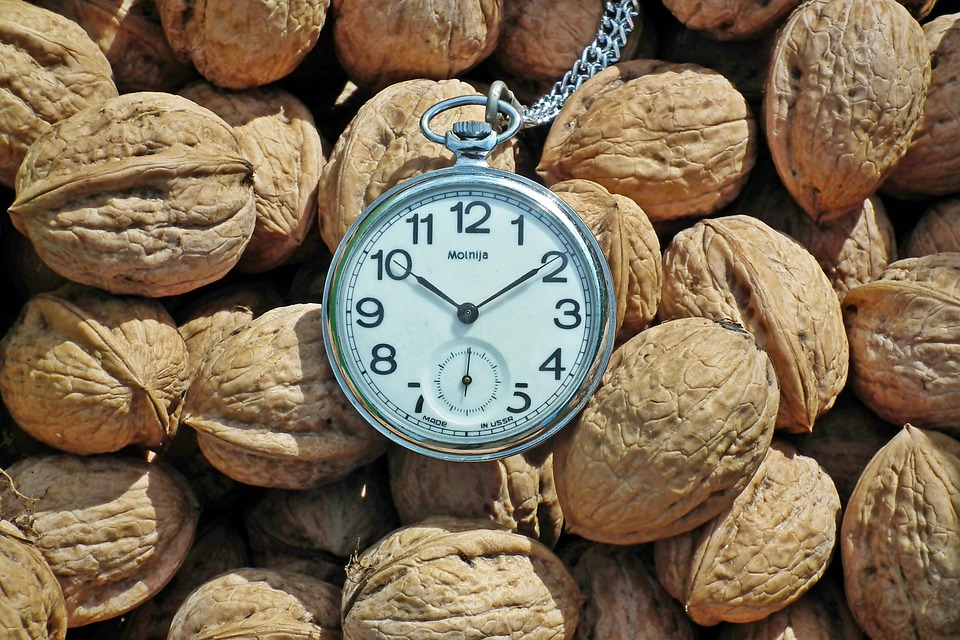 Nuts, Italian, Food, Cover, Garden, Fruit, Nature