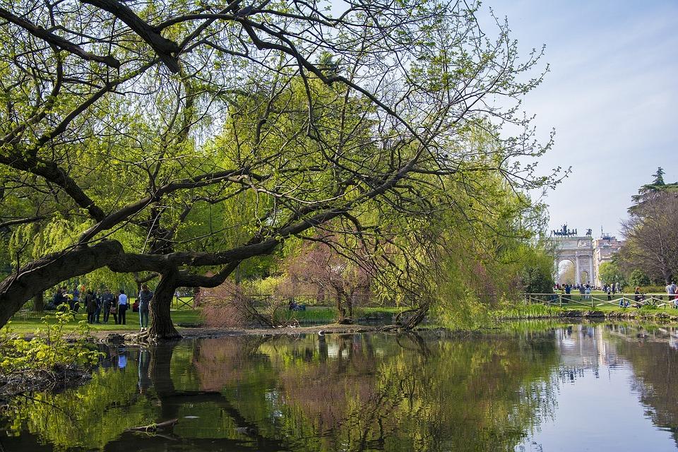 Milan, Park, Italy, Europe, Italian, Tree, Exterior