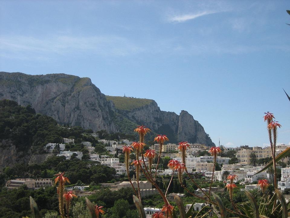 Capri, Scenic, Flowers, Destination, Landscape, Italian
