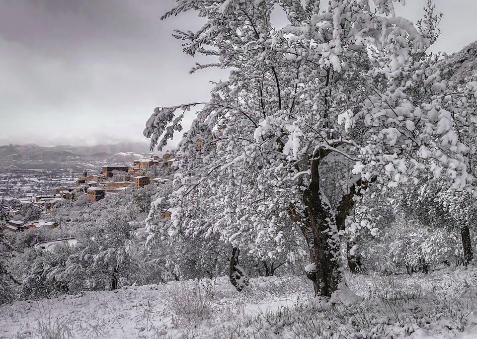 Snow, Winter, Italy, Castrocielo, Cold, Mountain