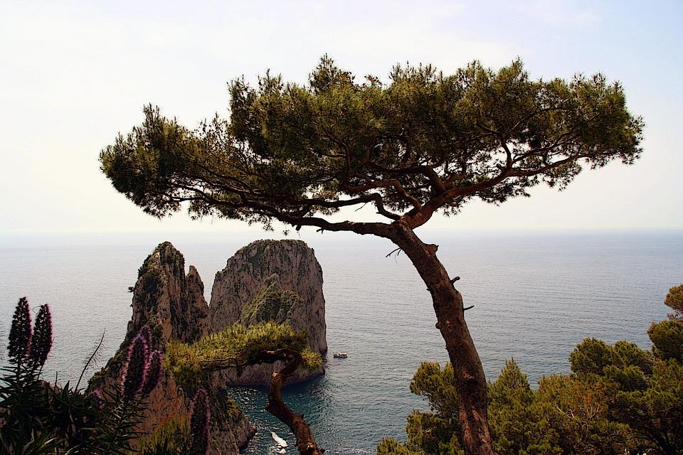 Italy, Capri, Island, Cliff, Water, Nature, Landscape