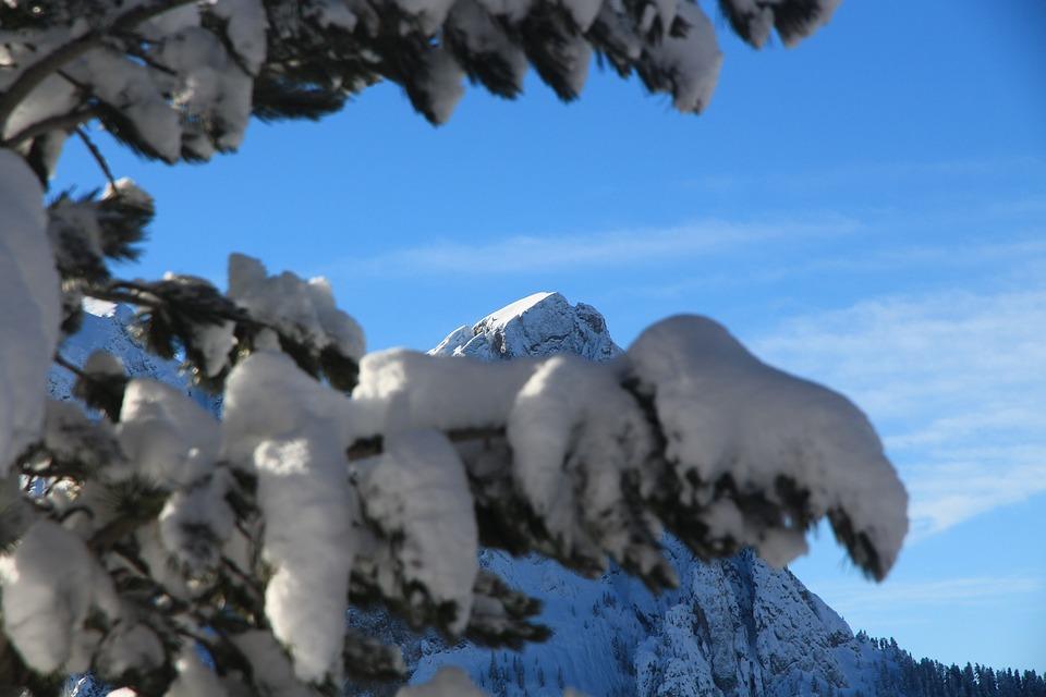 Snow, Mountain, Winter, Sky, Tree, Nature, Italy, Fassa