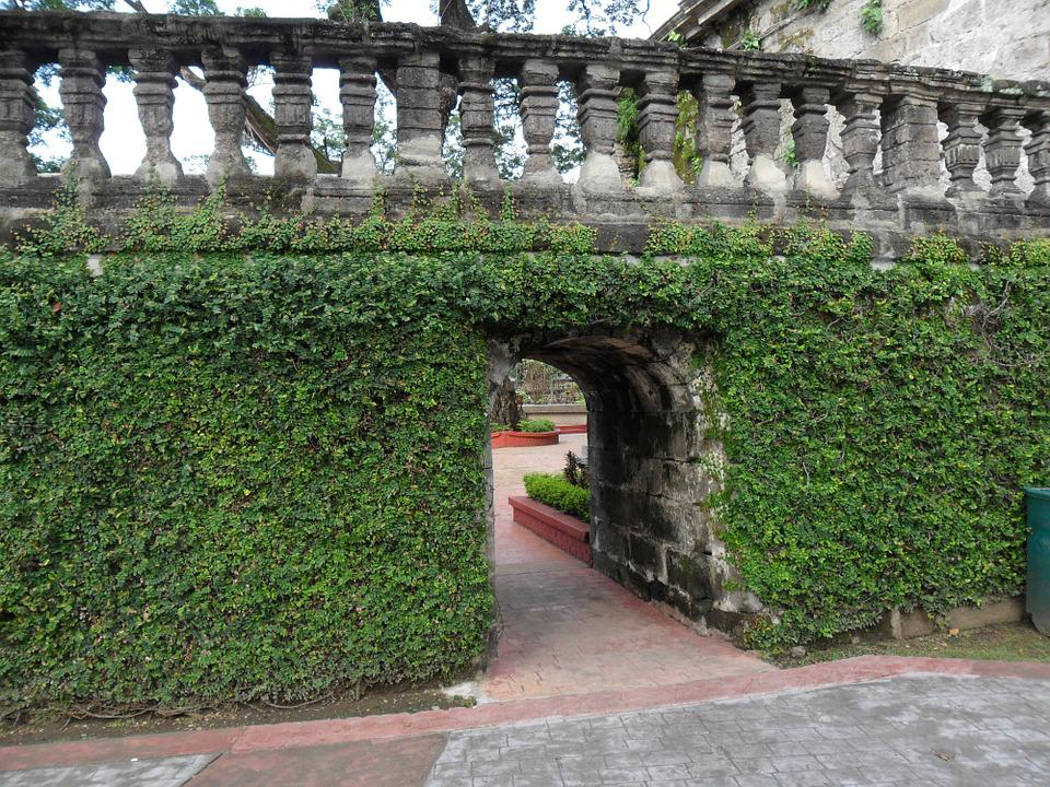 Ivy Covered, Ivy, Gate, Wall, Structure