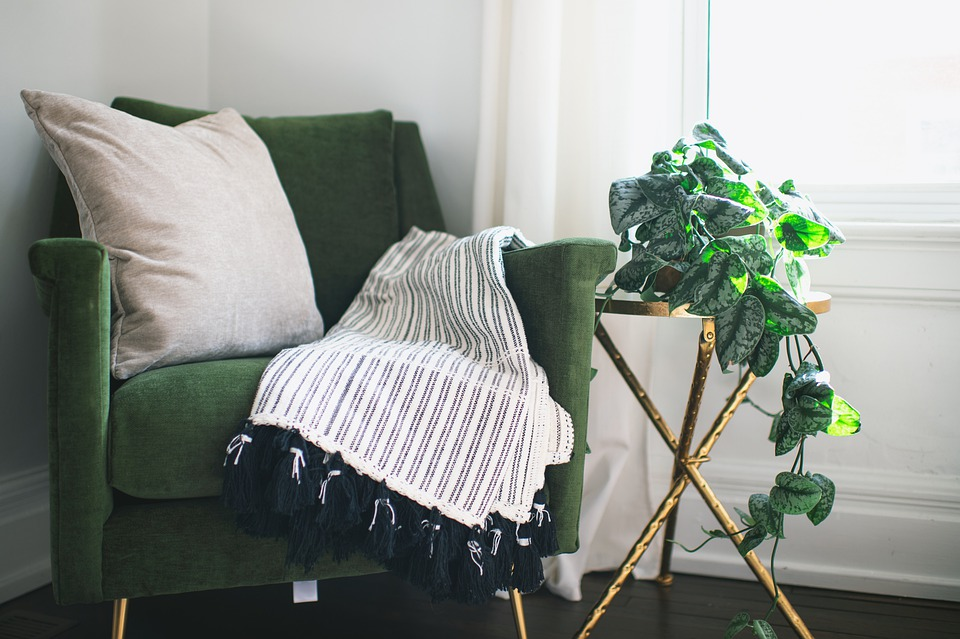 Chair, Plant, Ivy, Interior, Table, Blanket, Pillow