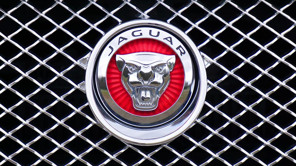 List Of Synonyms And Antonyms Of The Word Jaguar Car Logos