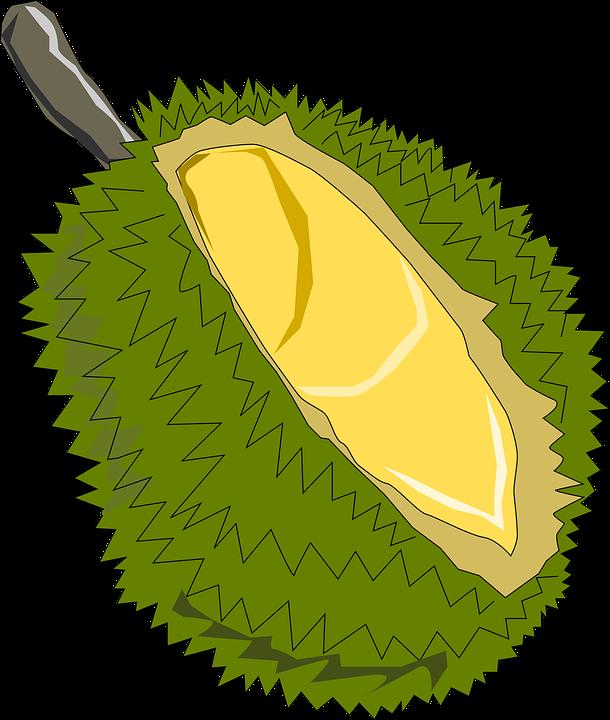Jackfruit, Fruit, Exotic, Soursop, Jack Tree, Jack, Jak