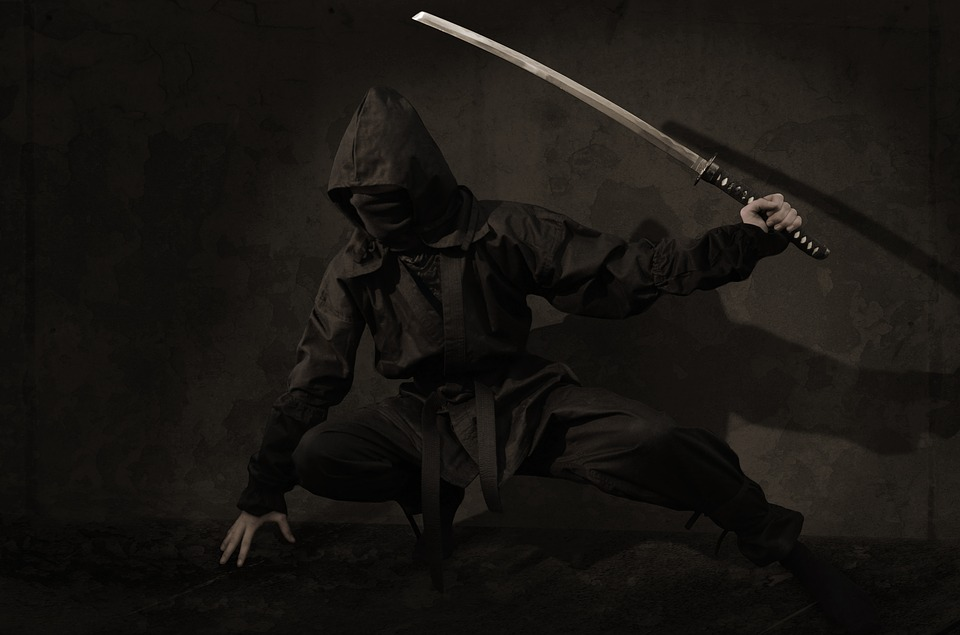 Ninja, Warrior, Japan, Assassin, Sword, Mask, Shadow