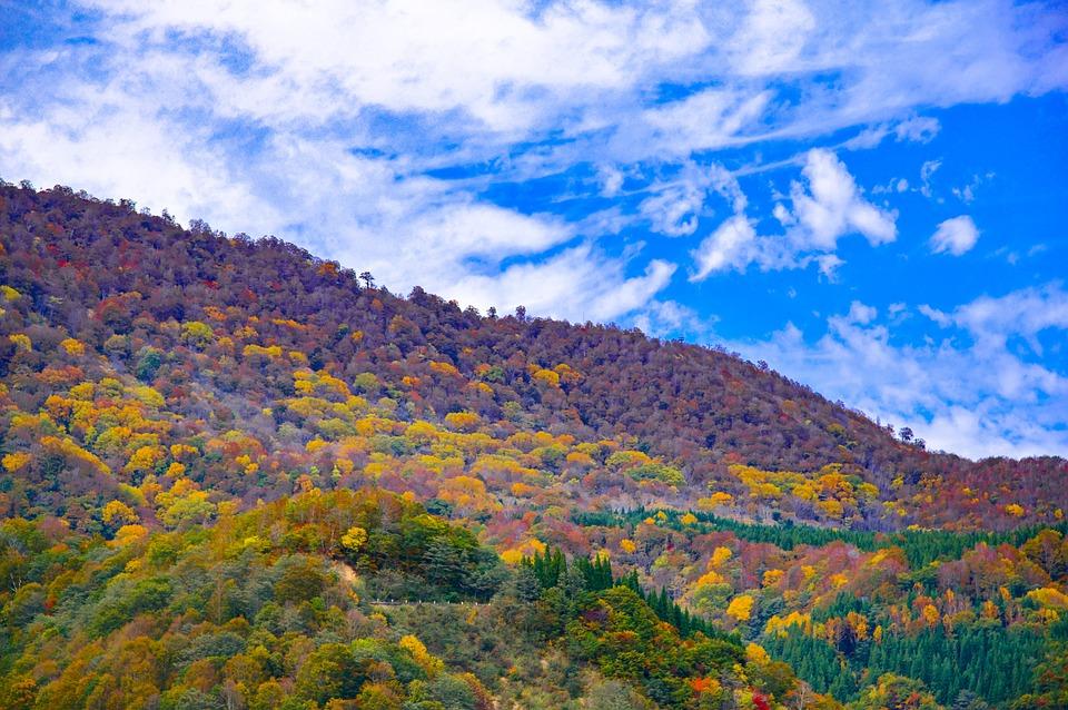 Japan, Autumnal Leaves, Akiyama Township, Valley