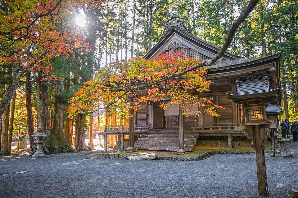 Temple, Trees, Leaves, Architecture, Japan, Lantern
