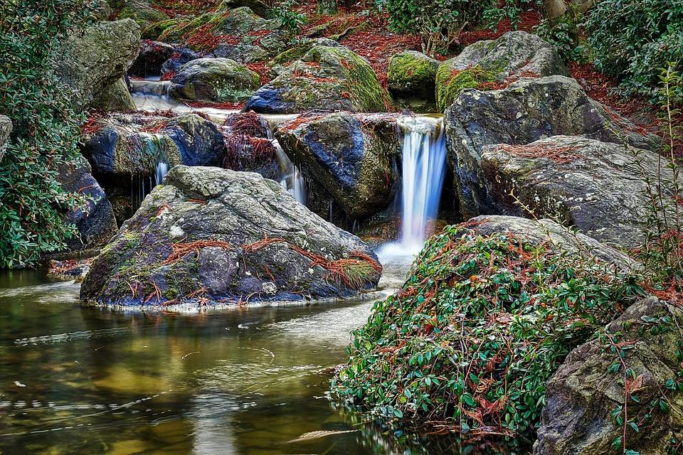 Japanese Garden, Bonn, Waters, Nature, Bach