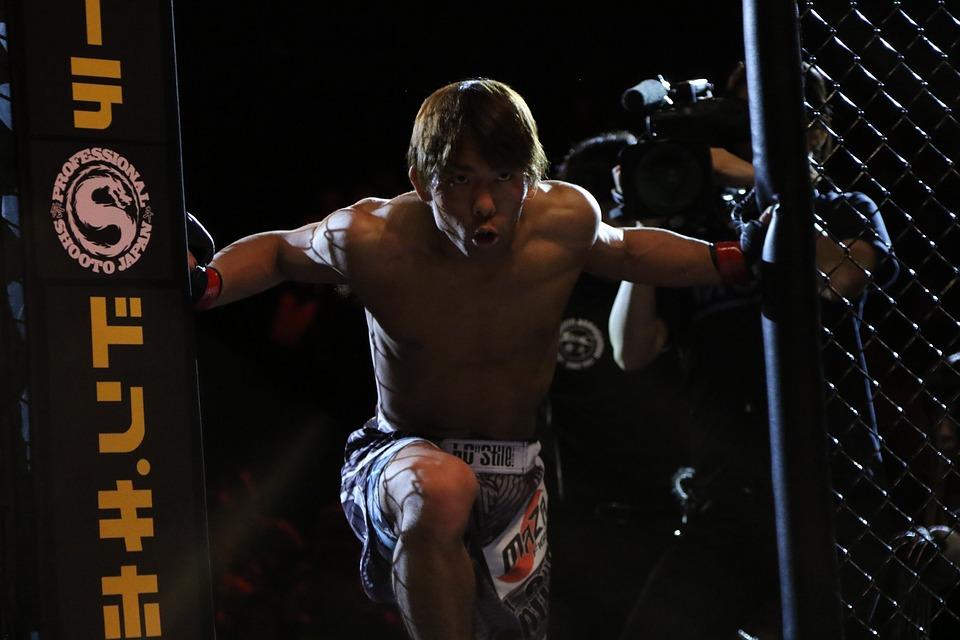 Mma, Mixed Martial Arts, Japan, Japao, Cage, Tokyo